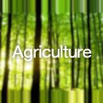 SolveCast - Agriculture